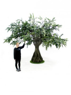 Trees, Plants & Foliage | Page 5 of 7Hire | Event Props | Event Prop